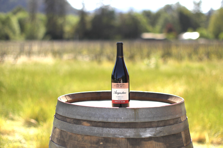 IMG_4418-steven-addington-photography